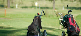For The Golfing Enthusiast